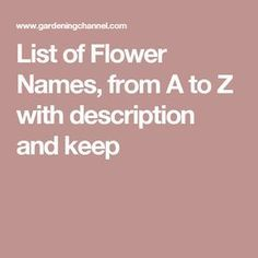 List of Flower Names, from A to Z with description and keep