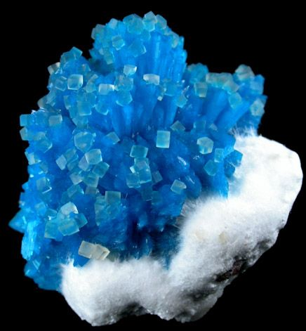 Cavansite on Mordenite with Calcite / Wagholi Quarry, Maharashtra, India Mineral Friends / Mineral Friends <3