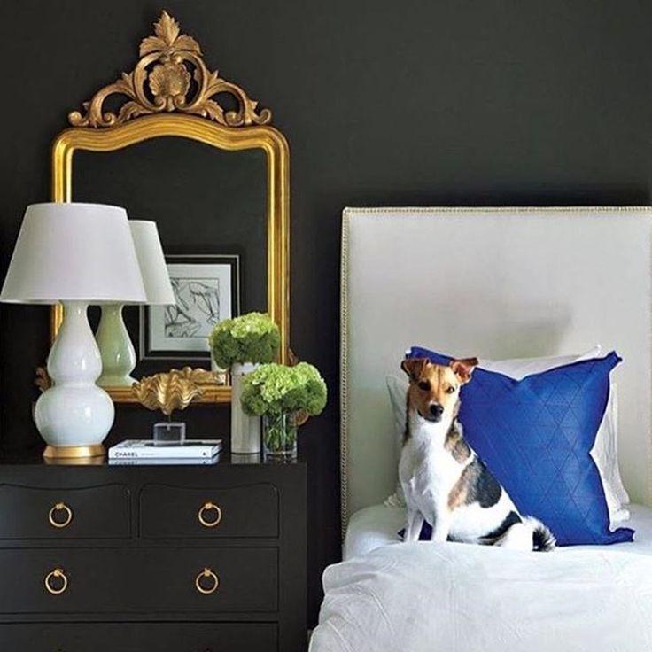 не только котики способны украсить #интерьер :) @frontgate #dog #собака #дизайнинтерьера #спальня #galleria_arben