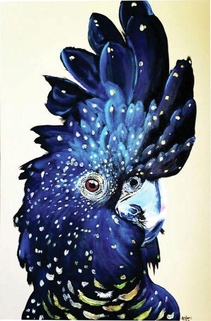 Cream Black Cockatoo, cocky, cockatoo art, bird art, black cocky, cockies, australian, parrot, art, original art, cockatoo art, bird art,