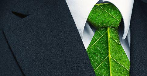 Por qué ser una empresa ecologica