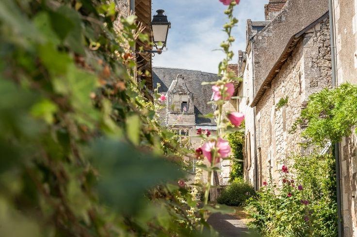 Crissay-sur-Manse : Touraine, entre vignobles et châteaux - Linternaute