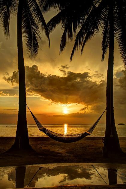 Perfect #sunset between two #palms   Website: http://patelcruises.com/  Email: patelcruises.com@gmail.com