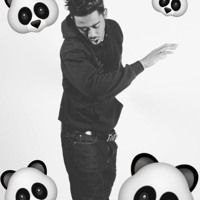 panda designer фото