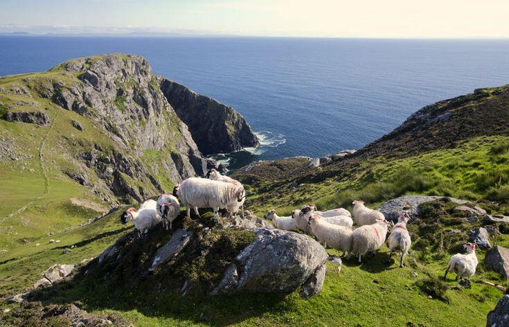 Irlande du Nord-Ouest, du Connemara au Donegal -(...)