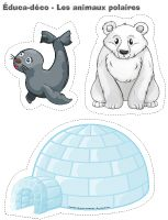 Éduca-déco-Les animaux polaires