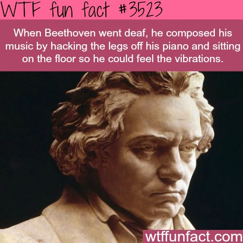 How Beethoven Felt The Music When He Was Deaf Wtf Fun