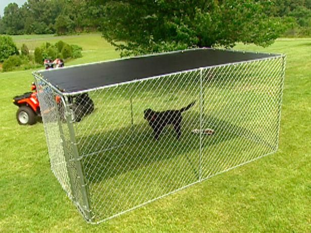 Google Image Result for http://img.diynetwork.com/DIY/2011/08/24/0169780_Chain-Link-Dog-Run_s4x3_lg.jpg