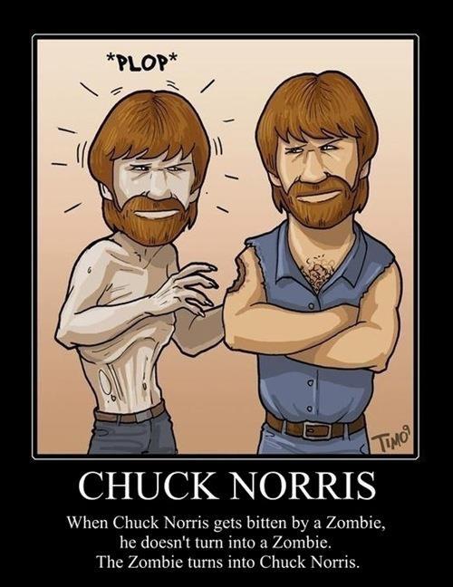 Chuck Norris FactLaugh, Chucknorris, Zombies Apocalyps, Funny Stuff, Humor, Norris Jokes, Funnystuff, Norris Zombies, Chuck Norris
