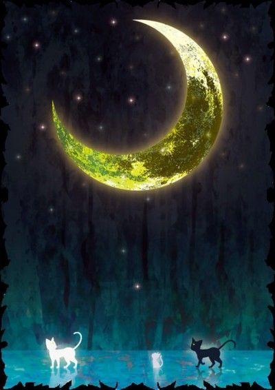 Sailor Moon, Luna and Artemis