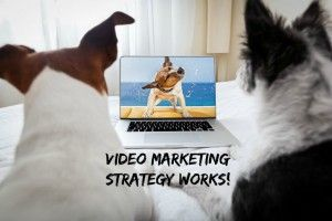 Do you use video in your online marketing? It is one of the best ways to connect with your current customers and gain many new customers to your business. Please Read my blog post with good reasons why you need a video marketing strategy! #videomarketing #strategy #onlinemarketing