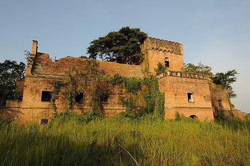 Congo Kinshasa - Democratic Republic of Congo Travel Guide