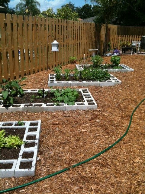 the most cost effective 10 diy back garden projects that any person can make 7 - Home Vegetable Garden Design