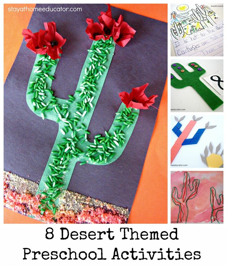 Desert Themed Preschool Unit - Stay At Home Educator