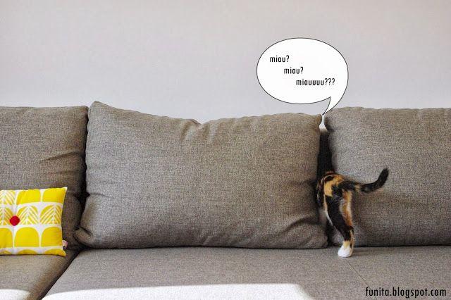 Kitten and sofa pillow