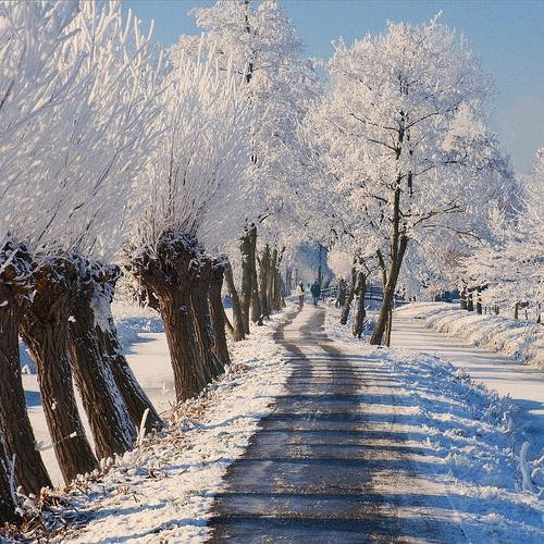1727 best winter winter the netherlands holland. Black Bedroom Furniture Sets. Home Design Ideas
