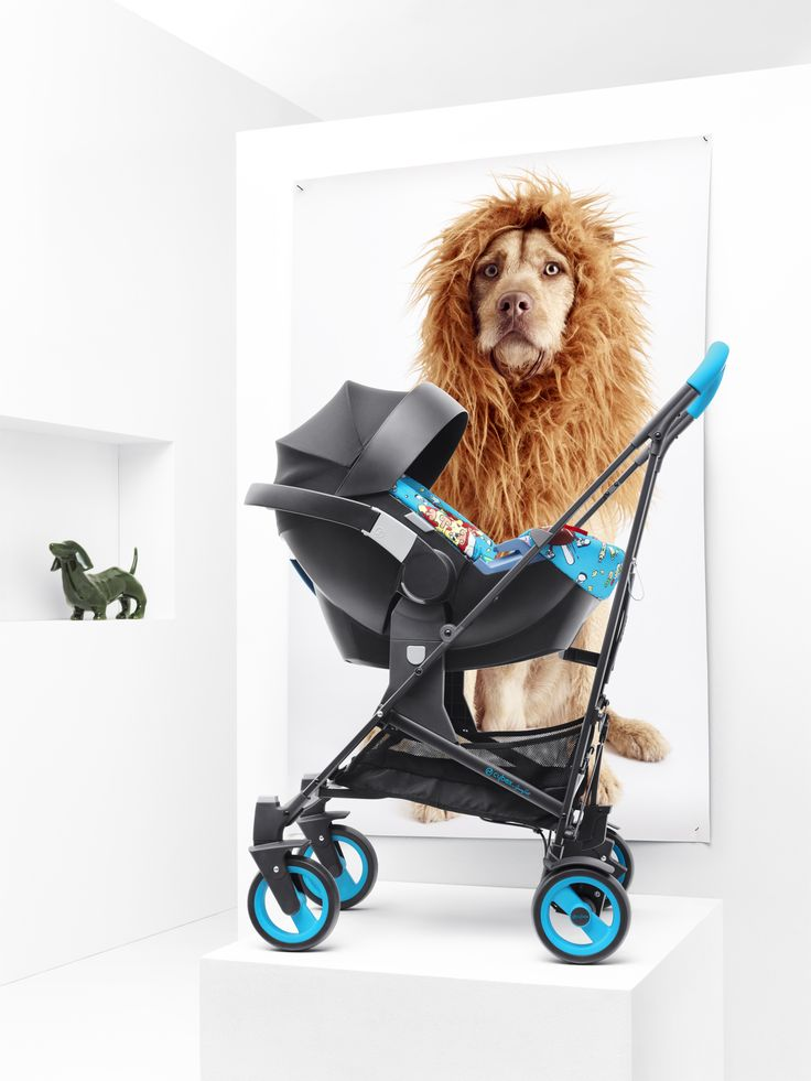 17 Best images about Carriages & Strollers on Pinterest | Holly ...