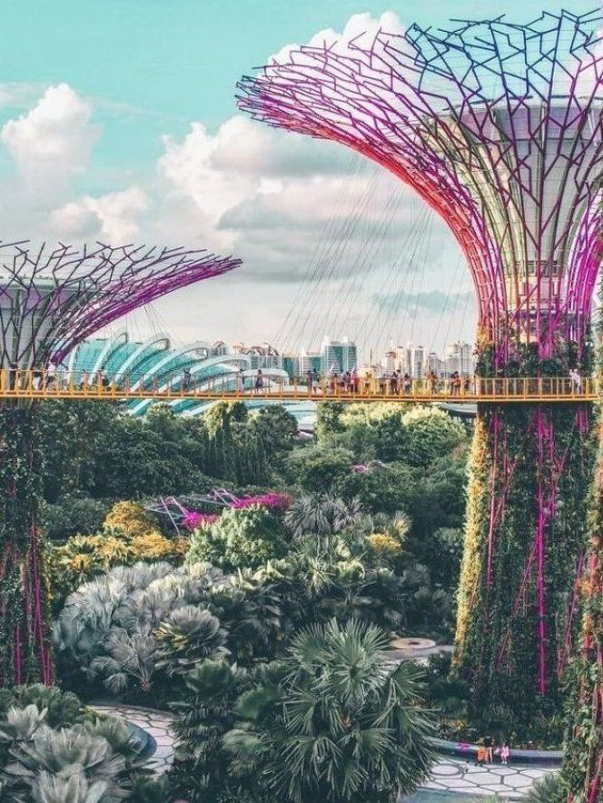 cb37e434a3edf7eaad9c7bbfdafbcee5 - How Long To See Gardens By The Bay