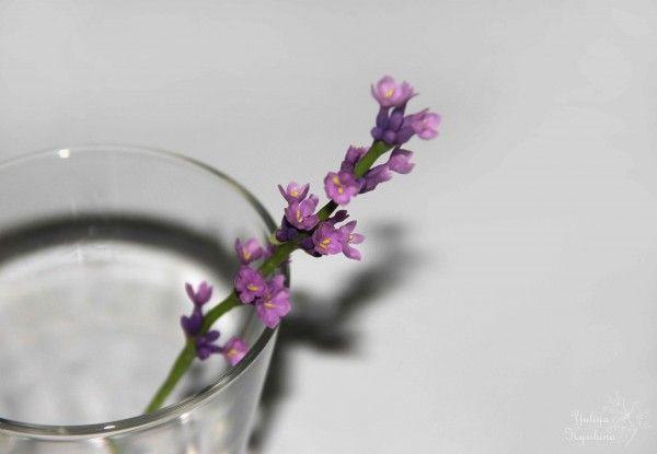 Фото мастер-класс по созданию веточки лаванды из полимерной глины FLEUR « Керамическая флористика. Цветы из холодного фарфора. Уроки и мастер-классы