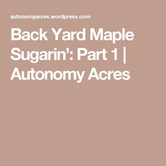 Back Yard Maple Sugarin': Part 1   Autonomy Acres