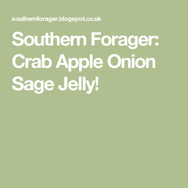 Southern Forager: Crab Apple Onion Sage Jelly!