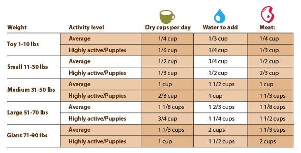 Dog Feeding Chart Puppy Feeding Schedule Feeding Puppy Dog Feeding