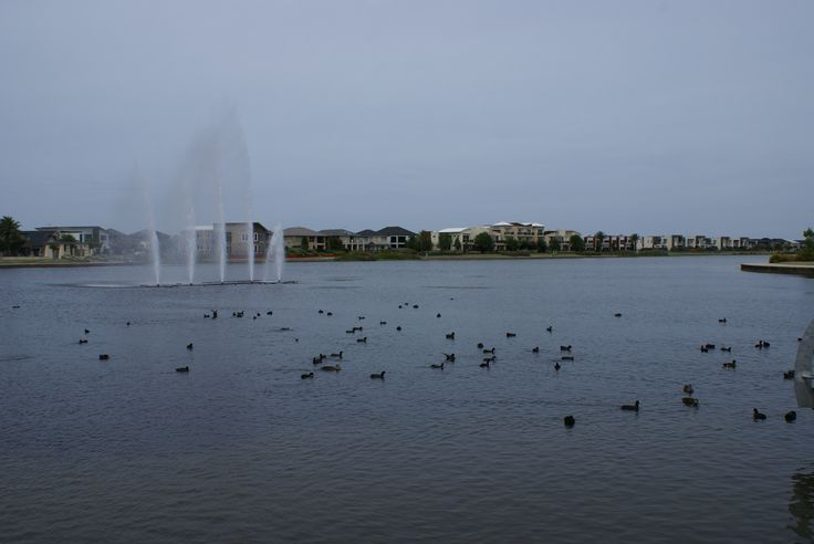 I thought rather than using a person for Rule of Thirds I would use the fountain from Lakeside in Pakenham. Maybe a bit busy with all of the ducks in the foreground. Shot was taken at 11.30am on a cloudy day. ISO 100, 1/400, f10, hand held with 18-70mm lens.