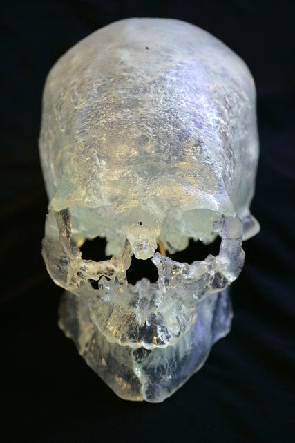 New DNA Results Show Kennewick Man Was Native American - The New York Times