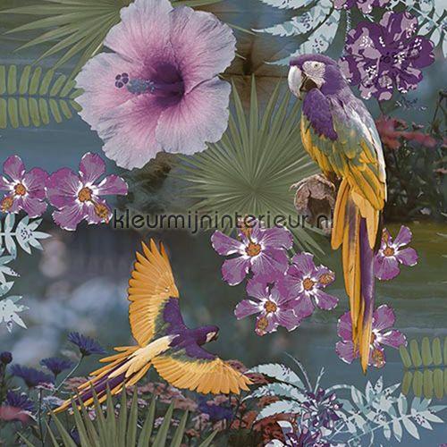 Papegaaien en tropische bloemen paars behang JW3782, Mix and Match van Behang Expresse