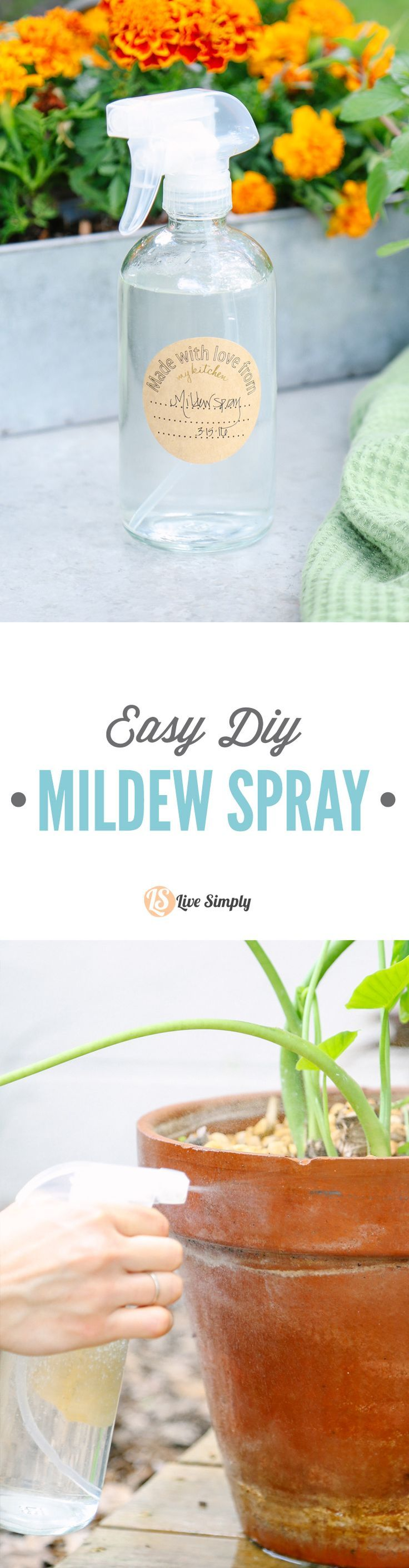 So easy and only one ingredient, or a three ingredient option. Tackles mildew and mold.