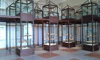 """""""Il Museo cinguetta in rete"""" Da Elba QuiNews dell'8.11.2014 #SmallMuseumTour #RionellElba #Musei #Elbadascoprire"""