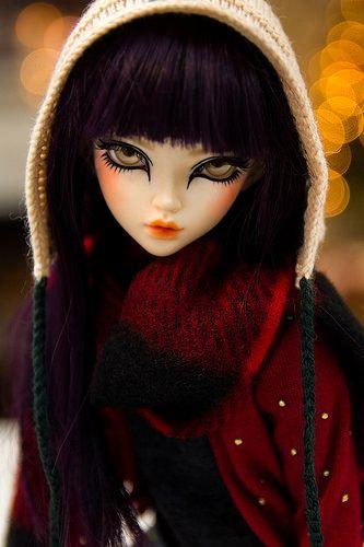 Biscuit - Minifee Chloe   Flickr - Photo Sharing!