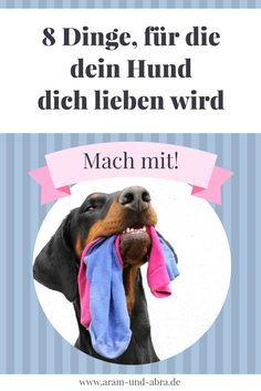 Hundeerziehung mal anders! | Blogparade Superfrauchen, Hundeblog, Blog, Hund, Erziehung, Training, Tipps und Tricks, Aram und Abra