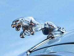 Leaping Jaguar Hood Ornament  by Gill Billington