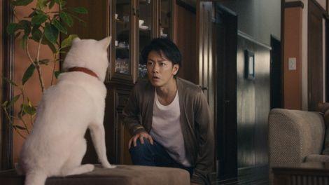 『ソフトバンク』の新CM発表会#佐藤健 Takeru Sato  (C)ORICON NewS inc.
