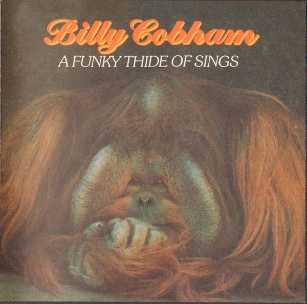 Billy Cobham - A Funky Thide Of Sings (CD, Album) at Discogs