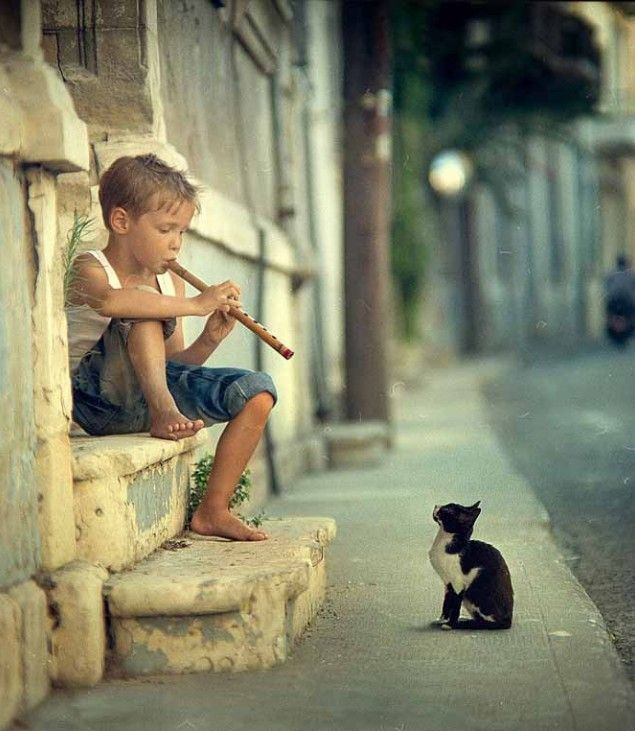 a boy playing flute to a kitty that will listen.