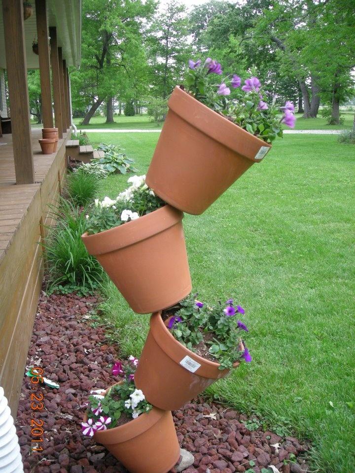 topsy turvy flowers