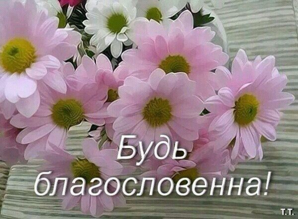 Pin by Nadezda-vit on Христианские открытки | Plants