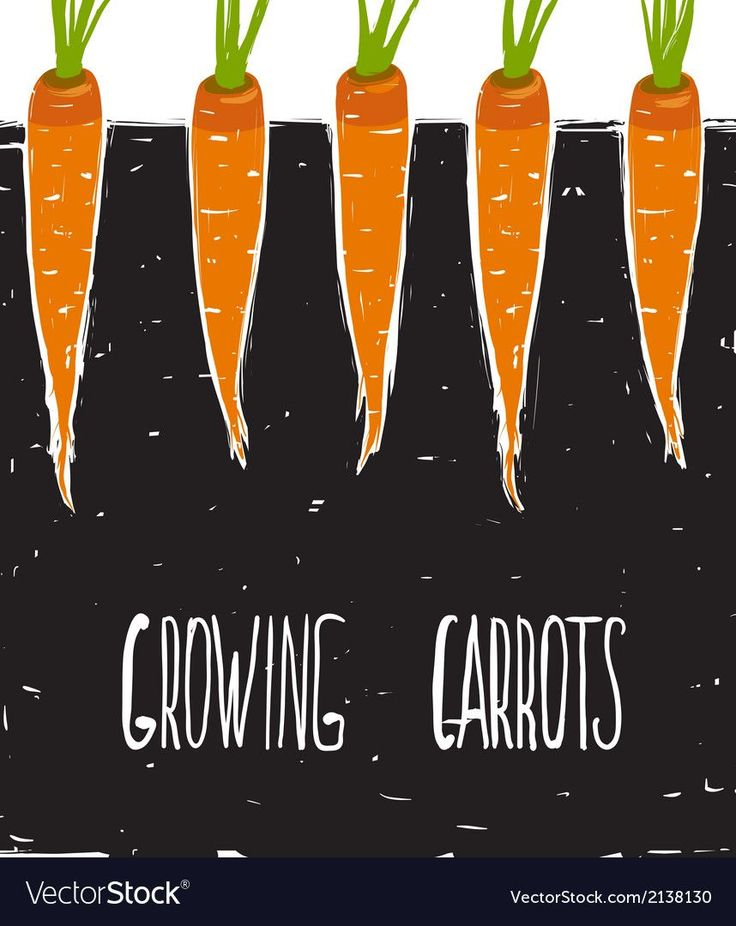 Carrots And Sticks PDF Free Download