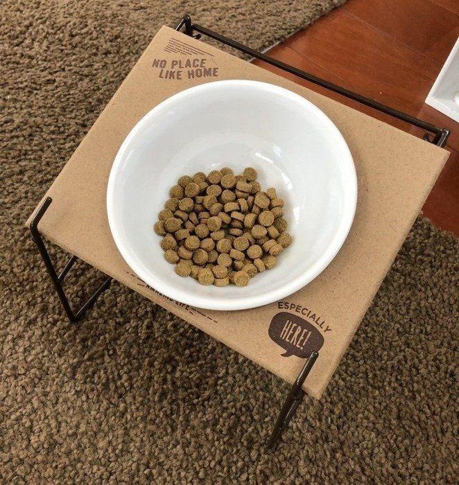 3coinsの テーブル付きフードボウル 愛犬が体験してみた いぬのきもちweb Magazine ボウル 犬 フード フード