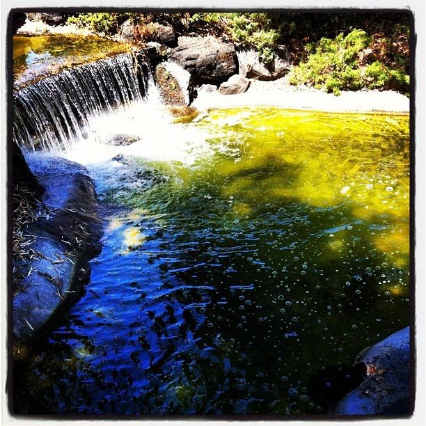 Miniature Waterfall. (Sonoma Avenue Park, Downtown Santa Rosa, California)