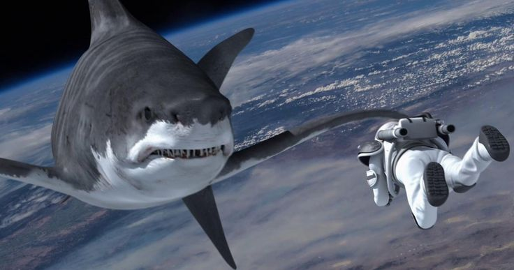 'Sharknado 4' Gets 'Star Wars' Inspired Title and Premiere Date -- 'Sharknado 4' will be set five years after 'Sharknado 3', with the East Coast recovering from its epic shark storm. -- http://movieweb.com/sharknado-4-title-premiere-date-summer-2016/
