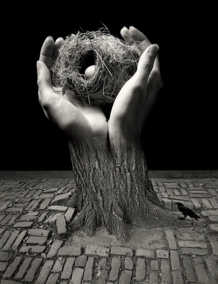 birdsnest, hands, fuglerede, hænder, brosten, bricks, fantasy, photograph, black and white, imaginative, cool
