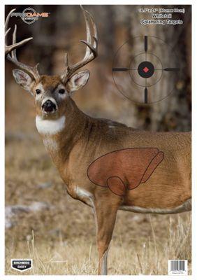 Birchwood Casey Pregame Whitetail Deer Shooting Target