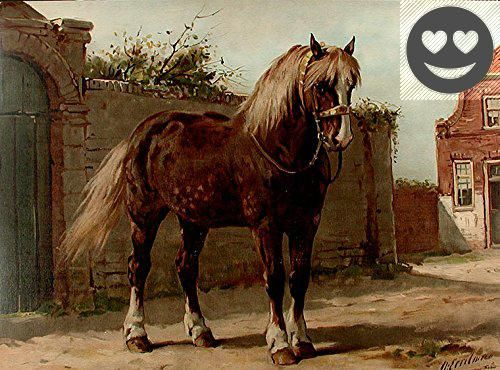 #manythings A rare and finely rendered portrait of a noble draft #horse, from the limited Dutch edition of Eerelman's 'Paardenrassen Kunstalbum'(Album of Horses)...