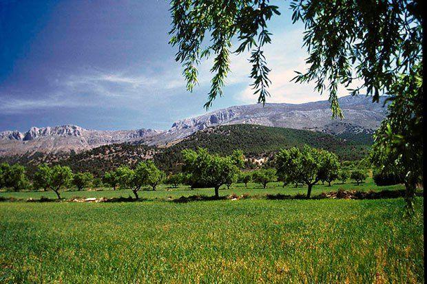 Planes de desarrollo sostenible de los parques naturales de las sierras de María-Los Vélez y Huétor | SoyRural.es