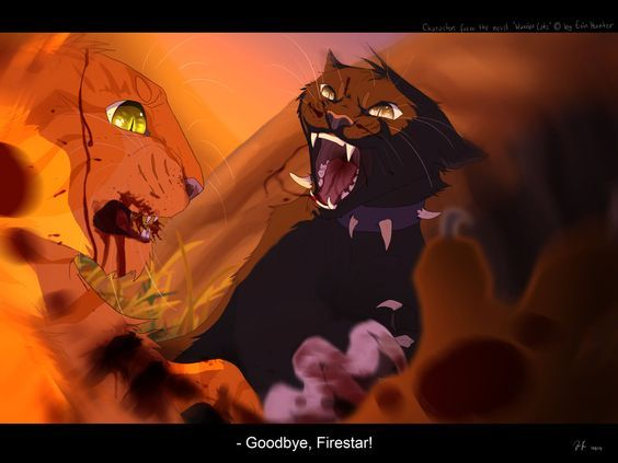 Warrior Cats Sparrowwing