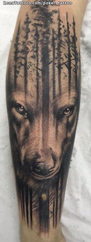 Tatuaje hecho por Ismael Hidalgo de Barcelona (España). Si quieres ponerte en contacto con él para un tatuaje/diseño o ver más trabajos suyos visita su perfil: https://www.zonatattoos.com/poker_tattoo  Si quieres ver más tatuajes de lobos visita este otro enlace: https://www.zonatattoos.com/tag/118/tatuajes-de-lobos  Más sobre la foto: https://www.zonatattoos.com/tatuaje.php?tatuaje=112213