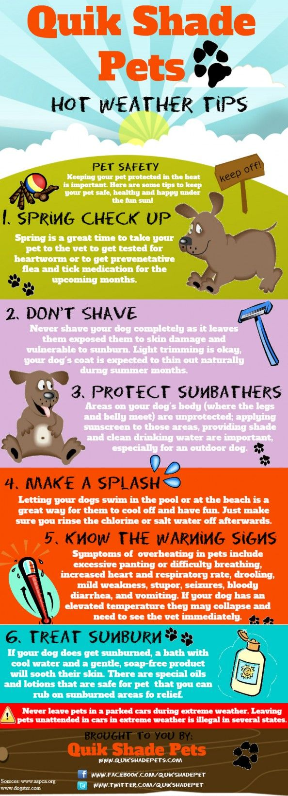 Hot Weather Tips For Your Pet  Infographic info for my future therapy dog.
